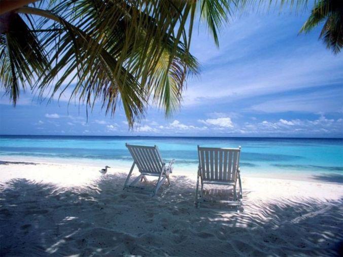 life-on-the-beach
