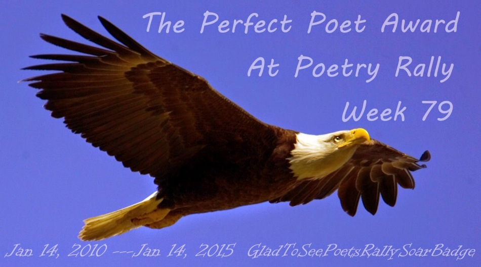 baldeagle+perfect+poets+at+hyde+park+poetry+palace+rally+week+79